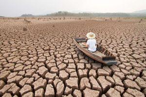 carlo petrini, paladino della biodiversità, ci ricorda come la siccità metterà a dura prova la...
