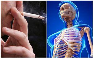 vite in fumo – non solo tumori, malattie cardiovascolari e respiratorie: fumare danneggia anche...