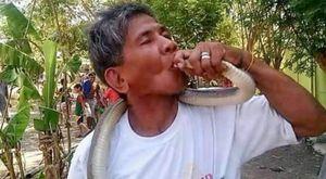 la storia di bernardo alvare, il guru dei serpenti ucciso nelle filippine dal bacio di un cobra...
