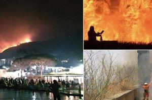 la sicilia brucia da oltre 24 ore, causando le chiusure di aeroporti e danni incalcolabili...