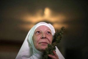 un gruppo di femministe che si sono auto-ordinate 'monache dell'erba' coltivano e vendono...
