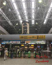 (日本東京2017) 交通篇-羽田去小田原[醒目篇] 附monorail SUICA教學