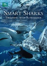 Smart Sharks: Swimming With Roboshark