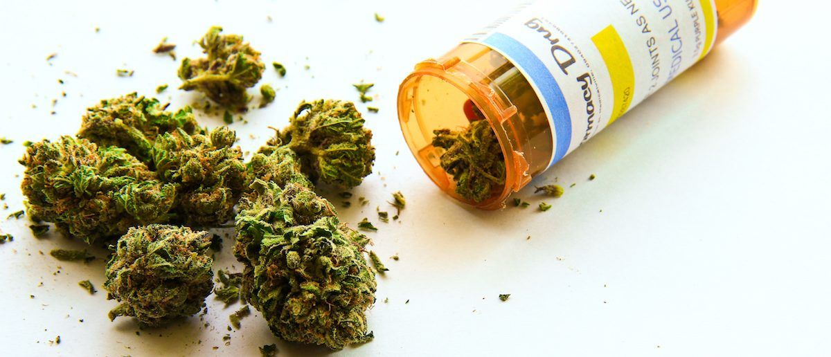Medical Marijuana Study Shows Stunning Effect On Treating Pain, Nausea
