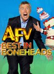 America's Funniest Home Videos: Best in Boneheads