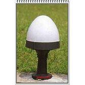 出清~萊特小舖~義大利進口工程塑膠雞蛋造型草坪燈