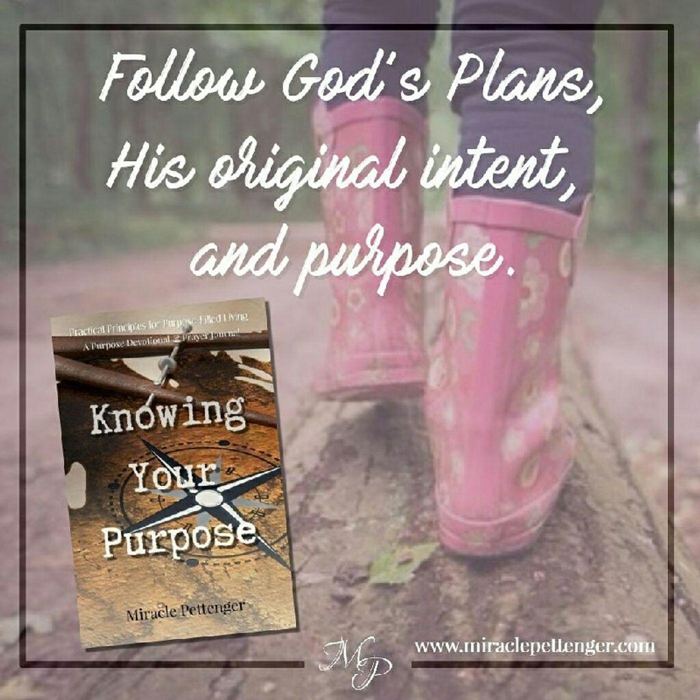 Follow God's Plans, Intent & Purpose