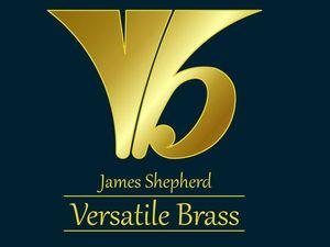 JSVB logo