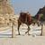 Египет ограничава работата на магазини и ресторанти, пирамидите остават отворени за туристи