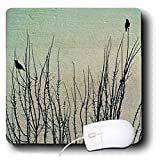 Patricia Sanders Creations - Birds on Branches- Winter- Nature Art - Mouse Pads