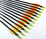 Shiny Black � Fiberglass Target Practice Arrows 22' for Children (1 Dozen)