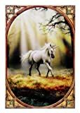 ANN STOKES Glimpse of a Unicorn Art Tile 8'x12' 99026 BY ACK