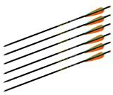 Ten Point Aluminum XX75 Crossbow Arrows (Color May Vary)