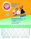 Arm & Hammer AFAH2025 Odor Allergen Pet Dander Control Electrostatic Air Furnace Filter, Pet Fresh A200, 20-Inch by 25-Inch (Pack of 4)