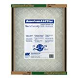 American Air Filter 220-410-051 Disposable Panel 14 x 30 x 1 - Case of 12