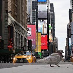 Φωτογραφίες από την αποκλεισμένη Νέα Υόρκη
