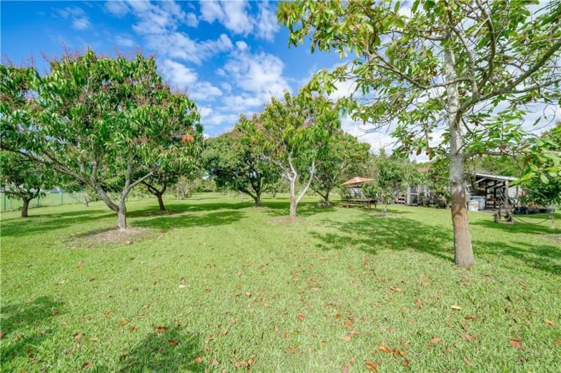 Valenzuela for Sale - 6501 SW 178th Ave, Southwest Ranches 33331, photo 63 of 95