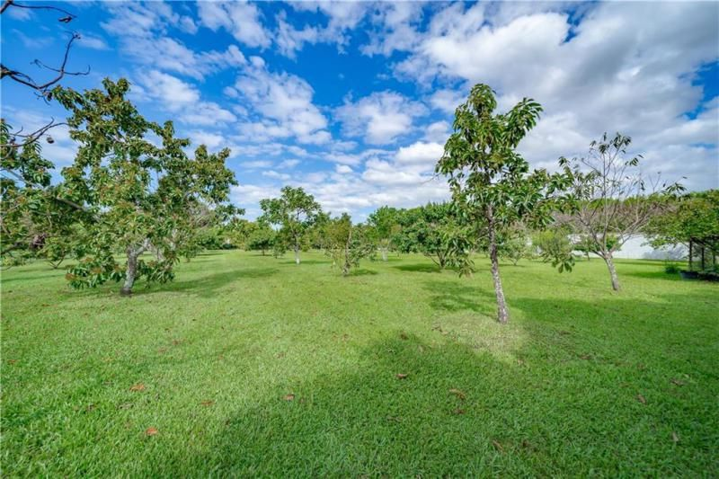 Valenzuela for Sale - 6501 SW 178th Ave, Southwest Ranches 33331, photo 64 of 95