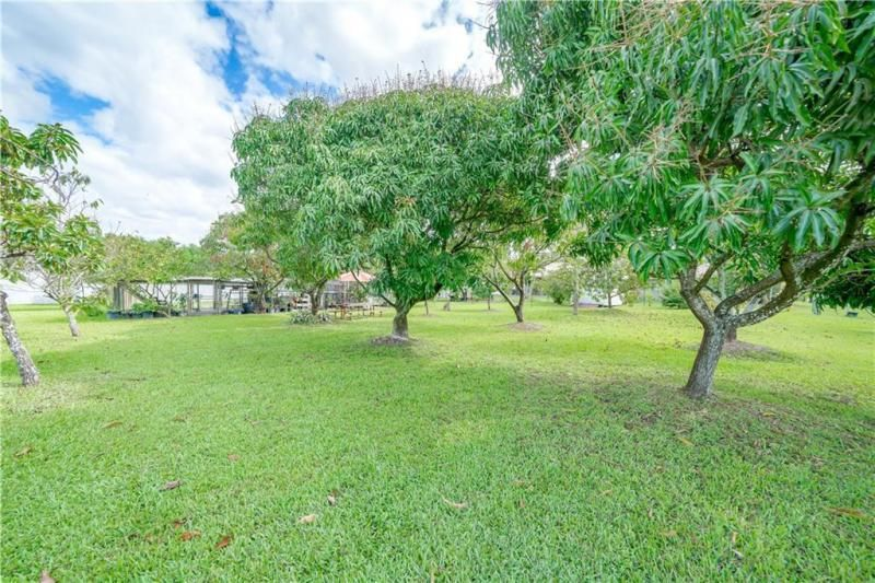 Valenzuela for Sale - 6501 SW 178th Ave, Southwest Ranches 33331, photo 65 of 95