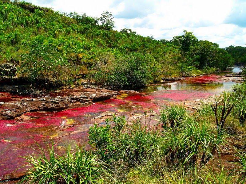 [Image: sungai-terindah-dengan-5-warna1.jpg]
