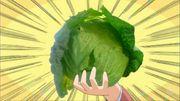 作畫崩壞唯獨要畫好椰菜?日本動畫不成文規定「椰菜檢定」!