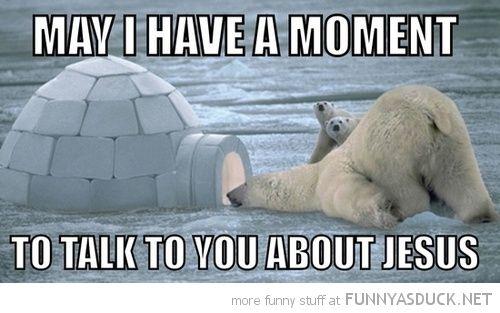 [Image: funny-polar-bear-looking-igloo-moment-ta...t-pics.jpg]