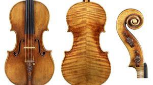 Il segreto dello Stradivari in mix di sostanze chimiche
