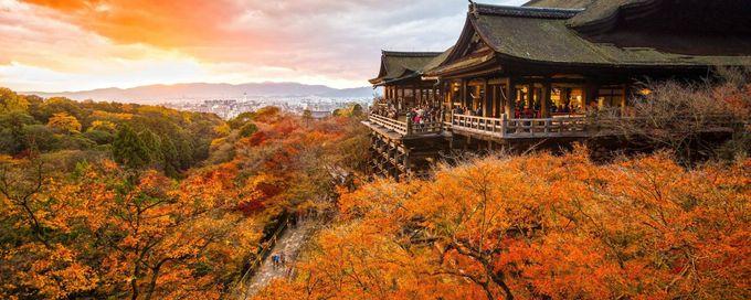 2019關西大阪、京都、奈良賞楓必去IG打卡熱門景點🍁楓葉季住宿超值推薦~~