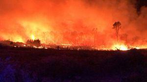 Isola Capo Rizzuto, fiamme sfiorano un camping: tanta paura per 30 villeggianti FOTO