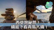 【西草灣秘景!橋底下看青馬大橋!】