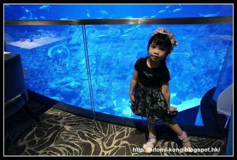 限聚令下之海洋公園Ocean Park(食 - 海龍王餐廳)︱香港本地。親子旅遊好去處
