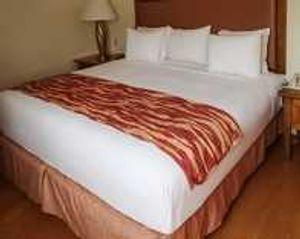 Image 10 | Rodeway Inn South Miami - Coral Gables