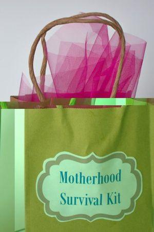 Motherhood Survival Kit