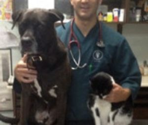 Image 7 | Queens Midway Animal Hospital