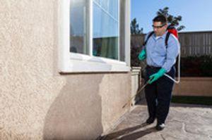 Image 3 | Ameritech Pest Control Services