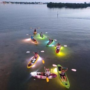 Sunset to Night Glass Bottom Kayak LED illuminated Tours