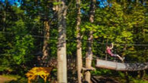 Image 3 | The Adventure Park at Long Island