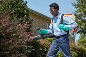 Image 6 | HomeTeam Pest Defense
