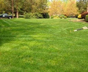 Image 4   Modern Lawn Service LLC