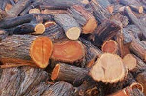 Arizona Firewood Supplier