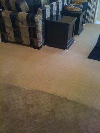 Image 4 | A & R Carpet Care and Professional Cleaning Services
