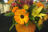 Looking for the perfect bouquet for fall? Check out this pumpin bouquet!