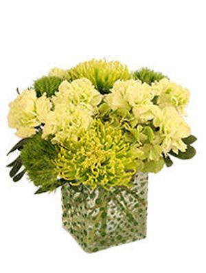 Image 3 | West End Florist