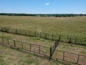 Image 4 | Honey Creek Livestock Equipment LLC