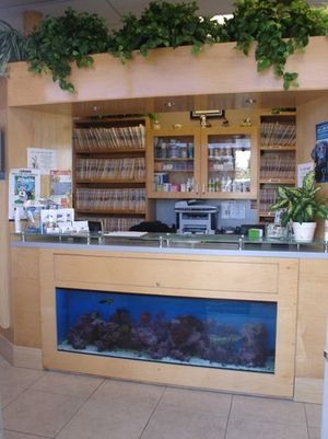 Animal Medical Center & Spa a pleasant modern facility design just for your pets