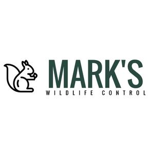 Image 2 | Mark's Wildlife Control