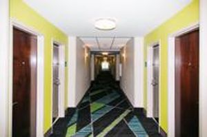 Image 3 | Holiday Inn Express & Suites Tampa -Usf-Busch Gardens