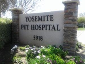 Image 7   Yosemite Pet Hospital