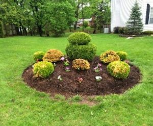 Image 3   Modern Lawn Service LLC