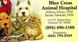 Image 3   Blue Cross Animal Hospital - Sandee Taketoshi DVM
